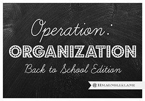 2015-Operation-Organization-BTS