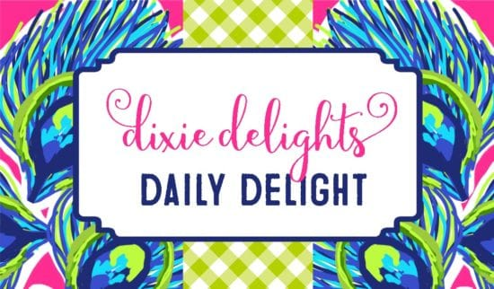 celebrates categories daily delight
