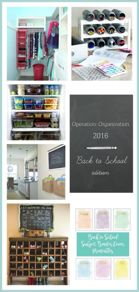 Operation-Organization-Collage-Day-2-1-489x1024