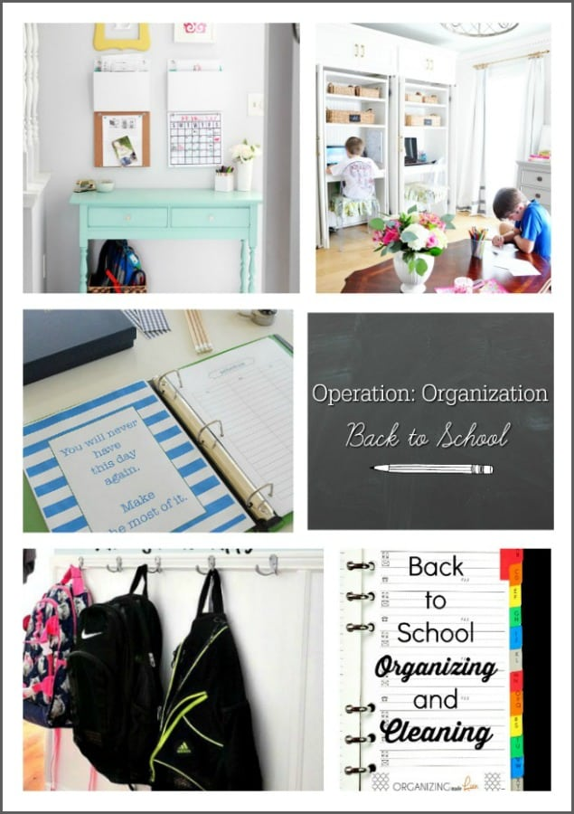 operation-organization-monday-graphic