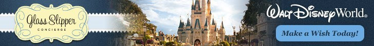 This image has an empty alt attribute; its file name is SideBar-WDW-Banner.jpg